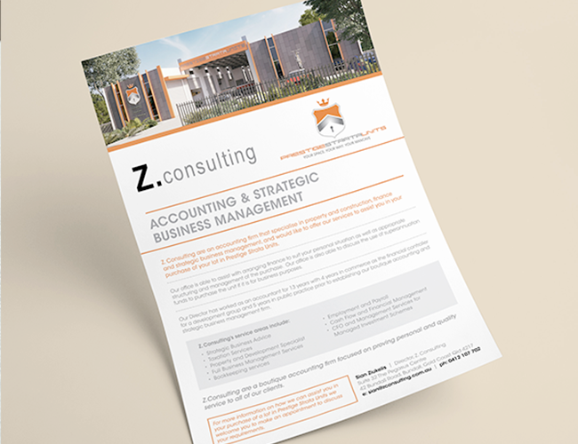Z.Consulting Flyer